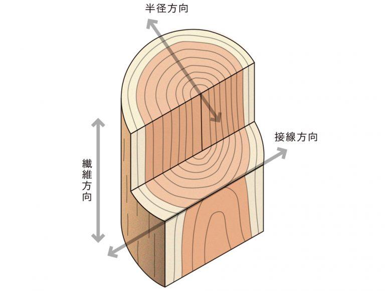 木材の異方性