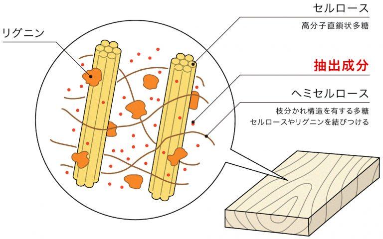 木材中の成分
