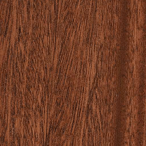 木目の表情